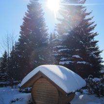 Blick auf schneebedeckten Garteb